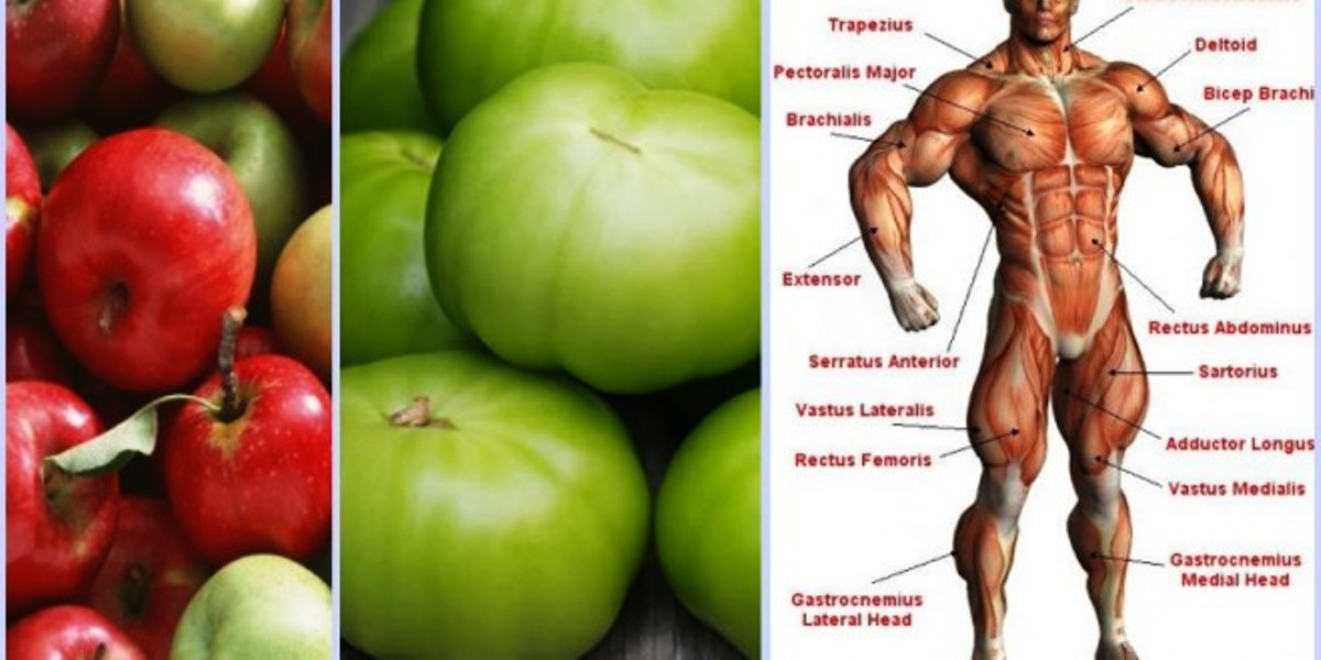 Reversing Muscle Atrophy With Food Eating Apples, Green Tomatoes May Increase Muscle Strength